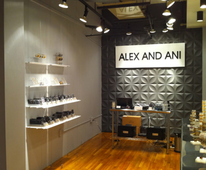 Alex and Ani Progress - Upper Mezzanine